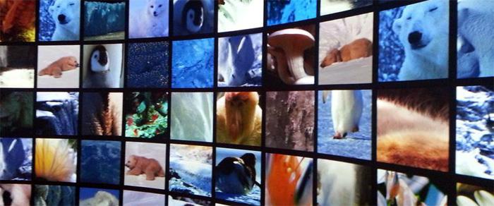 大自然超体験ミュージアム「Orbi」